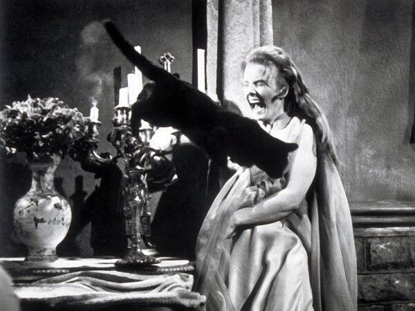 Poe, Ligeia sírboltja, Lady Rowena, Elisabeth Stepherd, macska